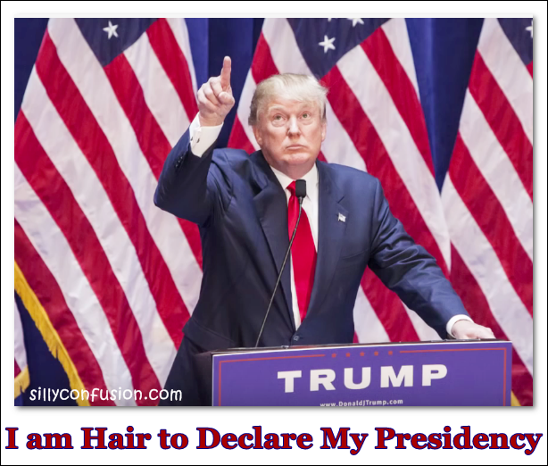 Donald trump hair meme joke fake real