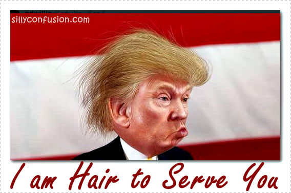 donald trump hair meme donald trump hair memes funny jokes and trolls